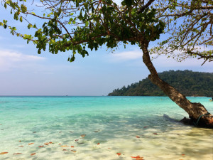 Koh Rok — Living Costs on Koh Lanta