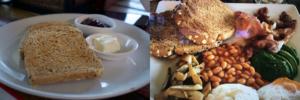 FatPig_Breakfast